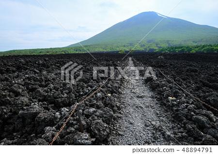 소 주행 용암 흐름 풍경 48894791