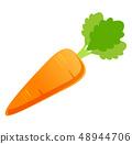 紅蘿蔔 48944706