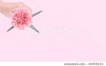 母親節Yasuno Kaoru送花卡片汫軟康乃馨頂視圖母親節 48956010