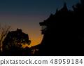 Sunrise and Iwasaki Castle 48959184