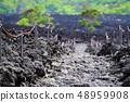 Landscape of roasting lava flow 48959908