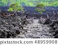 소 주행 용암 흐름 풍경 48959908