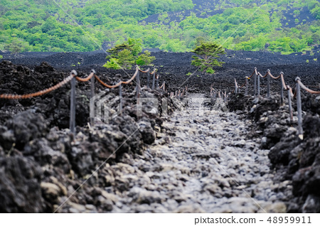 Landscape of roasting lava flow 48959911