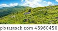 山峰 牧场 景色 48960450