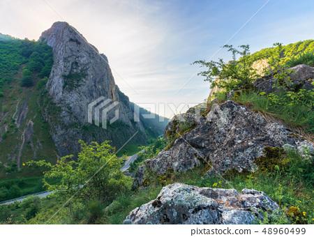 beautiful mountain landscape of romania 48960499