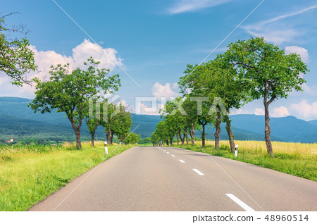countryside road in to the mountains 48960514