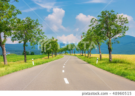 countryside road in to the mountains 48960515