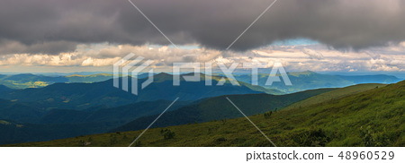 panorama of grassy alpine meadow in mountains 48960529