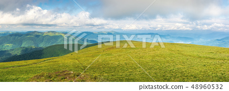 panorama of a mountain landscape in summer 48960532
