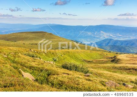 beautiful summer landscape in mountain 48960535