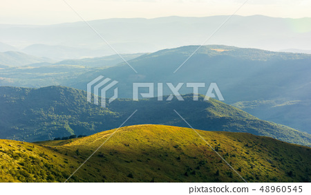 beautiful mountain landscape in summer afternoon 48960545
