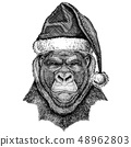 Gorilla, monkey, ape wearing christmas Santa Claus hat. Hand drawn image for tattoo, emblem, badge 48962803
