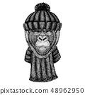 Gorilla, monkey, ape Cool animal wearing knitted winter hat. Warm headdress beanie Christmas cap for 48962950