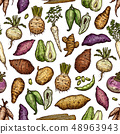 Exotic vegetables and roots seamless pattern 48963943