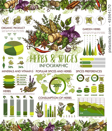 Seasonings, herbs and spices infographic 48964170