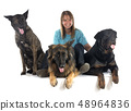 woman and dogs 48964836