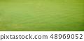 หญ้า,พื้นหลัง,สีเขียว 48969052
