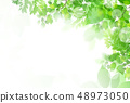 新的綠色葉子綠色背景 48973050