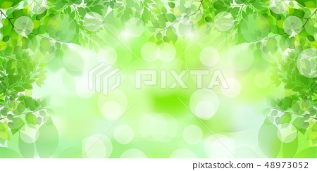 新的綠色葉子綠色背景 48973052
