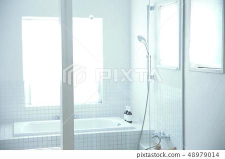 明亮的浴缸 48979014