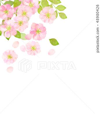 벚꽃 수채화 풍의 질감 48980426