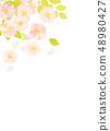 벚꽃 수채화 풍의 질감 48980427