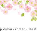 벚꽃 수채화 풍의 질감 48980434