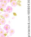 벚꽃 수채화 풍의 질감 48980436