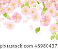 벚꽃 수채화 풍의 질감 48980437