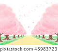 꽃, 봄의 벚꽃 가로수 길 48983723