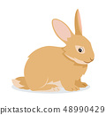 Cute rabbit icon isolated, small fluffy pet with long ears, domestic animal, vector illustration 48990429