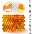 Honey comb, honey drop isolated on white 48990462