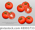 Tomatoes isolated Vector realistic. Detailed 3d 48993733