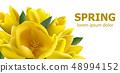 Yellow tulips spring card Vector. Beautiful 48994152