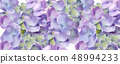 Spring hydrangea flowers watercolor background 48994233