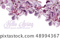 Hello spring background with purple lilac flowers 48994367