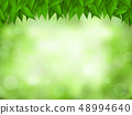 Nature green realistic background. 48994640