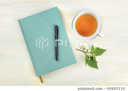 An overhead photo of a journal with a branch with green leaves, a pen and a cup of tea, shot from 48995310