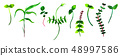 A set of little green sprouts, watercolor elements for a spring design 48997586