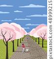 Hand drawn blooming sakura alley 48999215