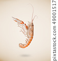 Back view of raw langoustine isolated on beige background. 49001517