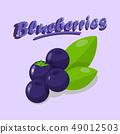 Delicious Blueberries Cartoon Social media Banner 49012503
