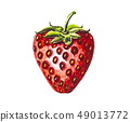 Strawberry fruit painting.Painted with watercolor. 49013772