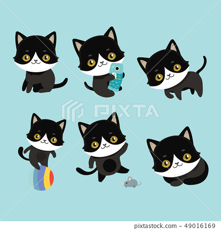 Cute cats character different pose. 49016169