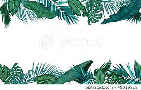Tropical Leaf Shape Frame On White Background Stock Illustration 49019515 Pixta .tropical leaves tropical flowers tropical leaf tropical fruit tropical fish tropical border tropical rainforest tropical background tropical fruits tropical bird tropical beach tropical island tropical birds tropical trees tropical drink tropical flamingo tropical party tropical. https www pixtastock com illustration 49019515