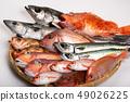 물고기 다양한 49026225