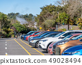 Full car parking with colorful cars in the forest 49028494