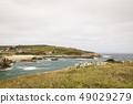 beautiful rocky coast 49029279