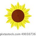 sunflower icon 49030736