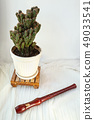 Brown wooden recorder flute next to a cactus plant 49033541